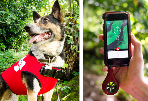Zephyr Search and Rescue app + vest by Curry and Hendrickson