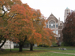 Autumn leaves and Art Building