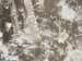 Zoom background by Cicelia Ross-Gotta