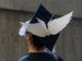 Graduation cap with wings